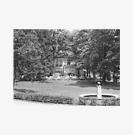 Der Pavillon als Waldcafé um 1960